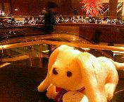 ana_hotel.jpg