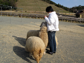 shikoku2009_7.jpg