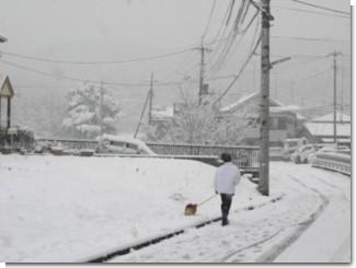 snow_080203_2.jpg