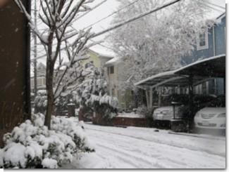 snow_080203_3.jpg