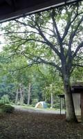 seseragi2007.jpg