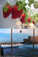 strawberry_onsen.jpg