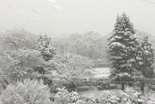 snow_2018Jan_4