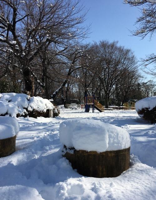 snow_2018Jan_5
