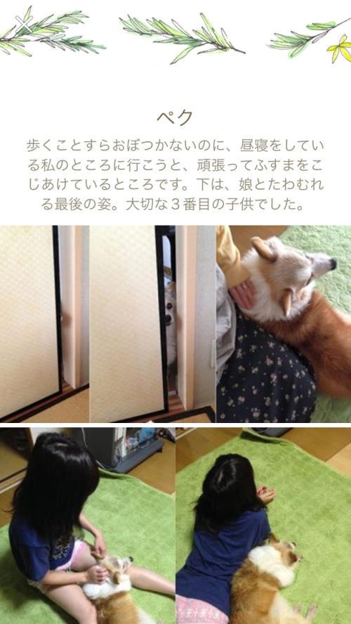 2014_facebook9.jpg