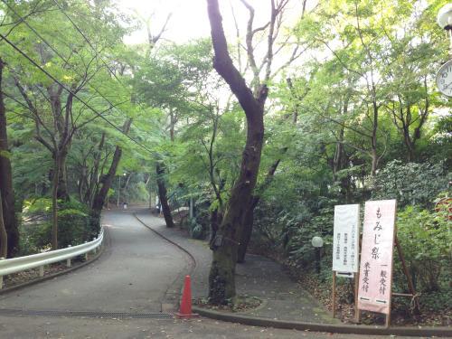 jwu_high_2014_1.jpg