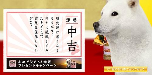 omikuji_2013.jpg