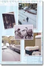 2014_snow.jpg