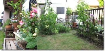 garden_2010.jpg