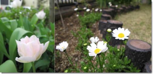 garden_2015_04_2.jpg