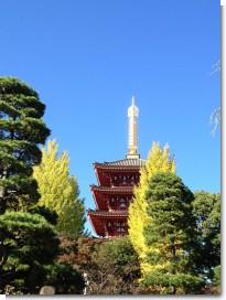 takahata2012_6.jpg